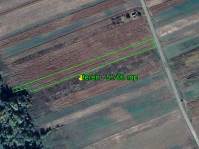 Berești Tazlău - la asfalt teren 5.700 mp - numai 3.700 EURO