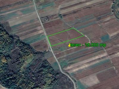 Berești Tazlău - la asfalt teren 18.000 mp - numai 14.500 EUR