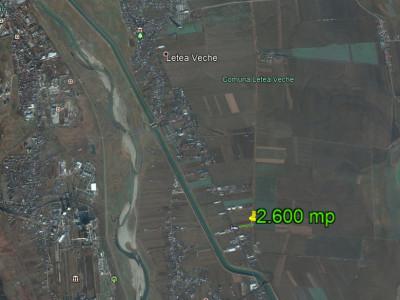 Letea Veche - stradal - teren 2.191 mp - ideal investiție
